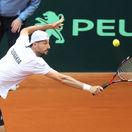 tenis, Davis cup, stvorhra, Igor Zelenay,