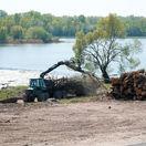 Štátny podnik rúbe stromy, ochranári sa búria