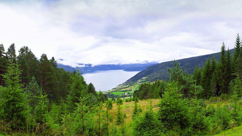 les, stromy, fjordy