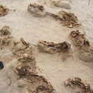Peru objav obetisko deti rituál