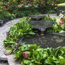 jar, jazierko, skalničky, záhrada
