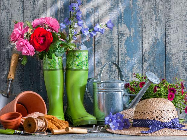 jar, máj, záhrada