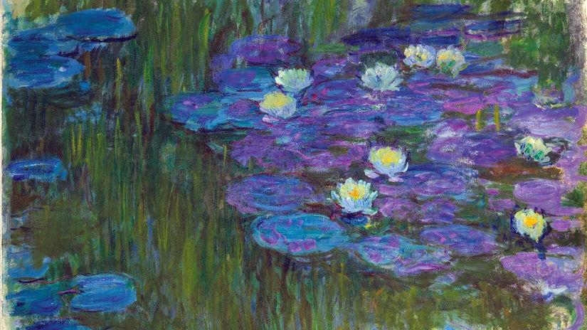 Rozkvitnuté lekná Claude Monet
