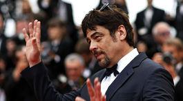 Herec Benicio del Toro máva divákom.