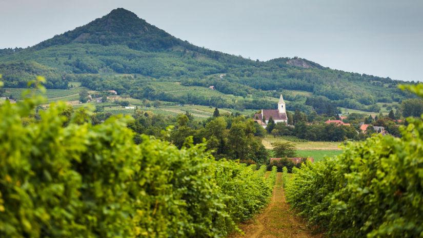 Tokaj, Maďarsko, vinica, kostol, vrch, príroda