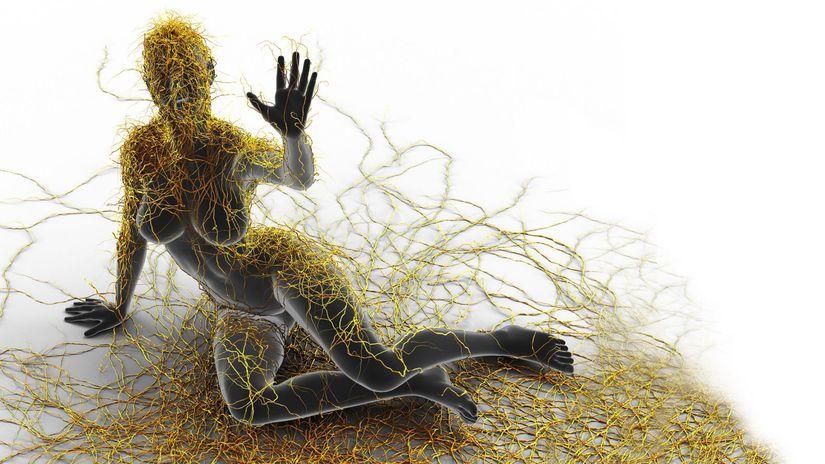 skleróza multiplex, človek, nervová sustava