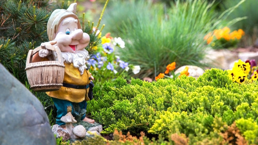trpaslík, záhrada