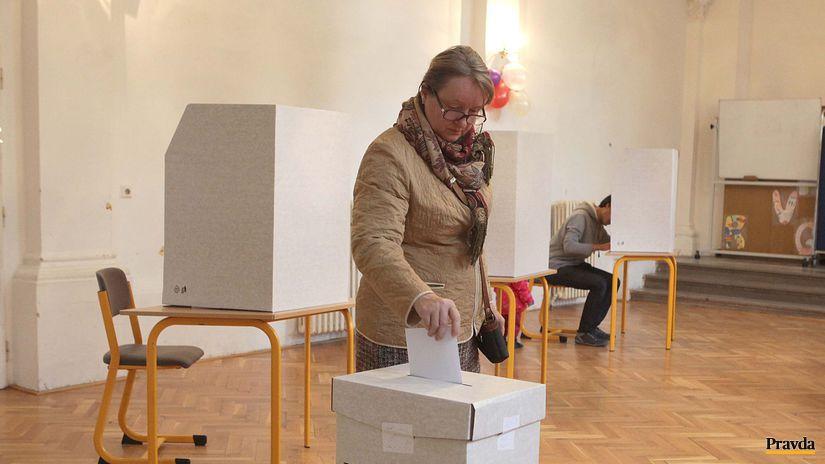 komunalne volby, urna, volič