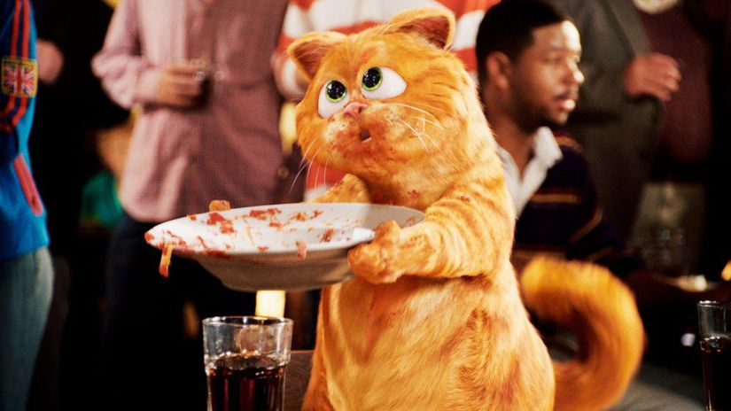 kocúr Garfield