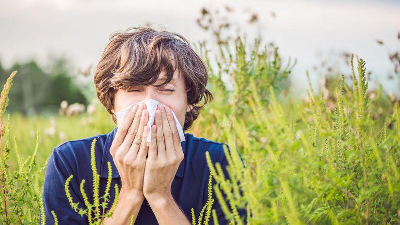 M alergiu na peniaze?