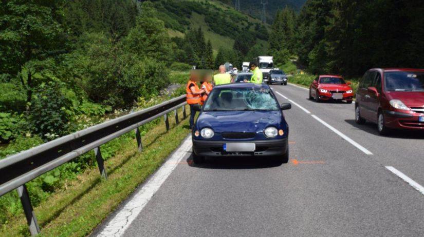 polícia mŕtvy poľský chodec Korytnica nehoda