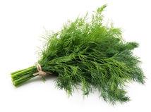 kôpor, bylinky