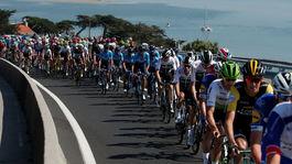 Pelotón, Tour de France