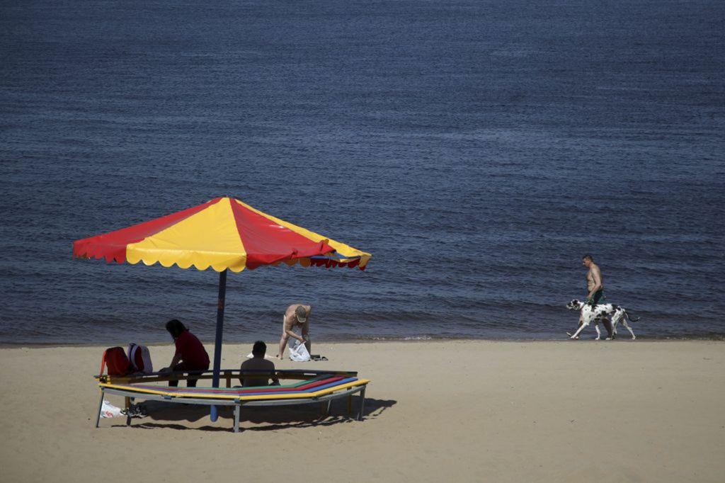 Rusko, pláž, leto, dovolenka, slnečník, pes