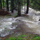 VYSOKÉ TATRY, les, povodeň