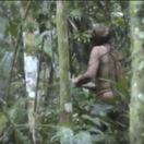 V brazílskom pralese natočili osamelého indiána, je zrejme posledný z kmeňa