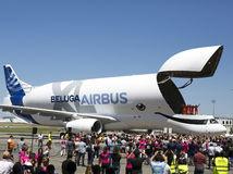 Airbus verí veľkým lietadlám. Nákladná Beluga XL prvýkrát letela, Airbus A380 žije