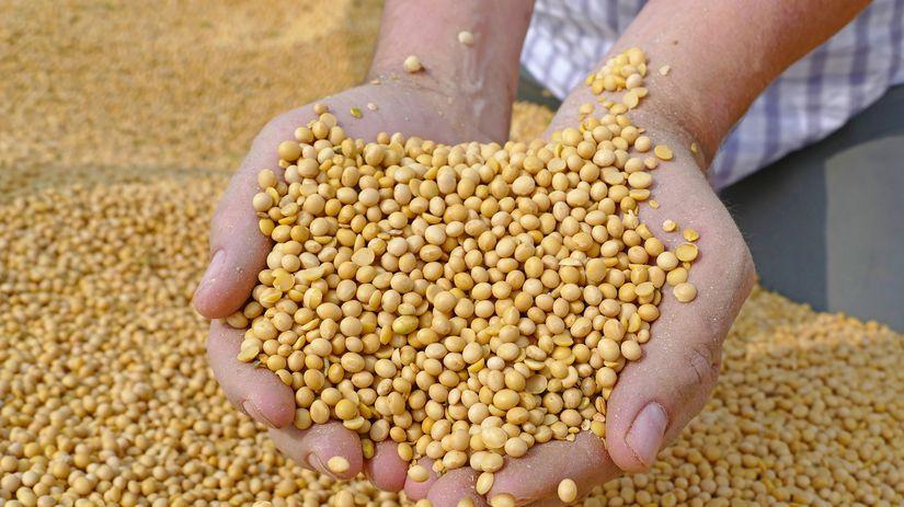 sója, ruky, poľnohospodárstvo