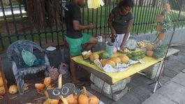 kokosový orech Srí Lanka