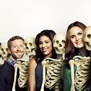 bones, kosti, emily deschanel, david boreanaz, tj thyne,