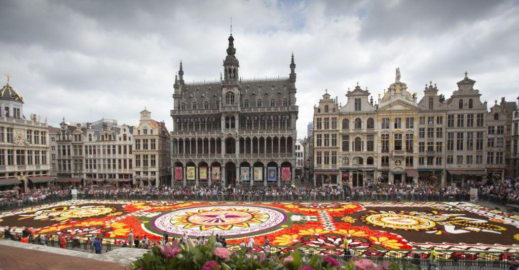 Brusel, kvet