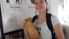 dievča so sloním zubom