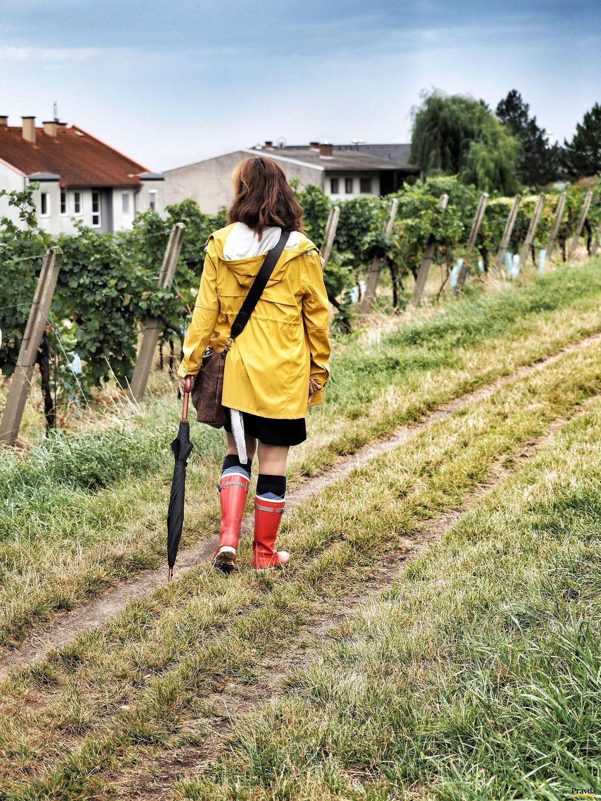 Vyskúšajte chuť jesene v Dolnom Rakúsku - Cestovný ruch - Cestovanie ... b0623ab2205