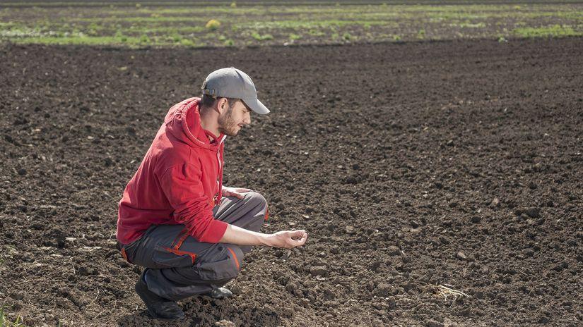 pôda, poľnohospodárstvo, pole