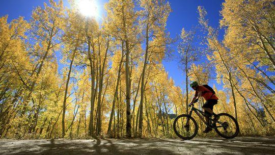 Milovníci pohybu si na Liptove vyberú z 800 kilometrov cyklotrás