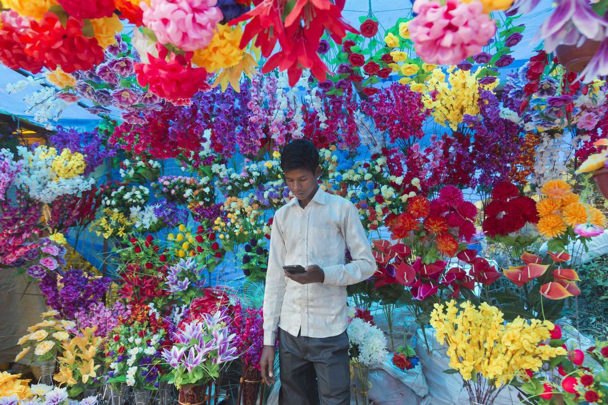 India, kvety, mobil, smartfón