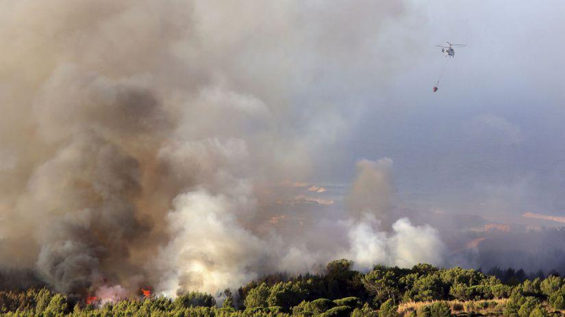 Portugalsko, Lisabon, požiar, les