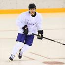 Sukeľ hokej