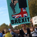 protest, brexit