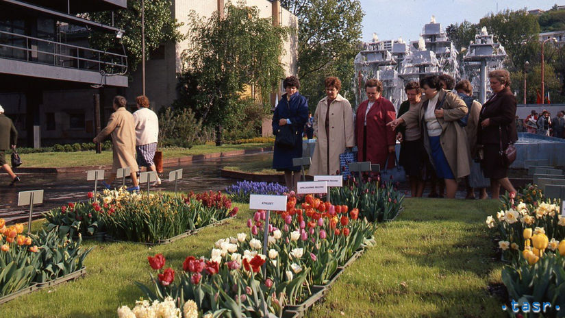 Flóra, PKO, kvety, výstava kvetov