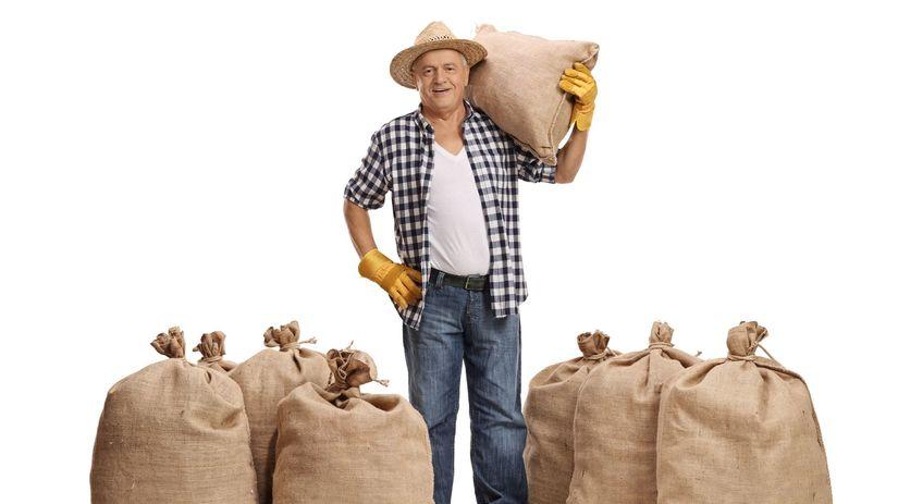 dôchodca, farmár, vrecia, senior, práca