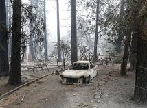 kalifornia, usa, požiar, auto, les