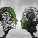 duša, pamäť, mozog, strom, hlava