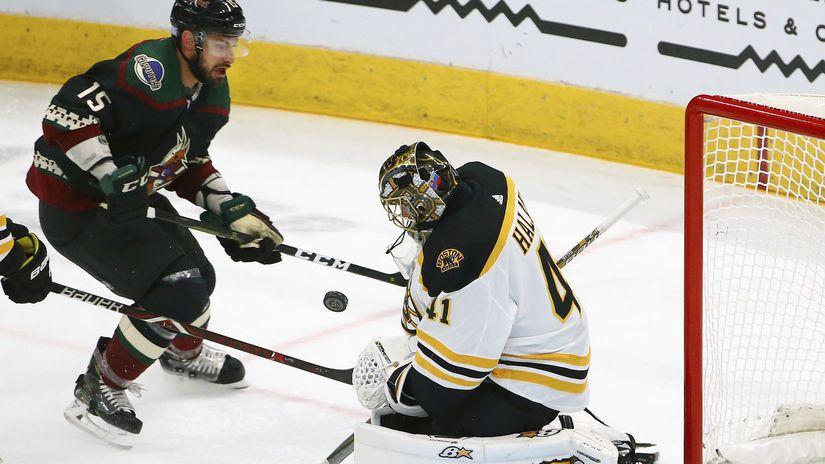 Bruins Coyotes Hockey halák