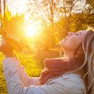 jeseň, slnko, list, príroda