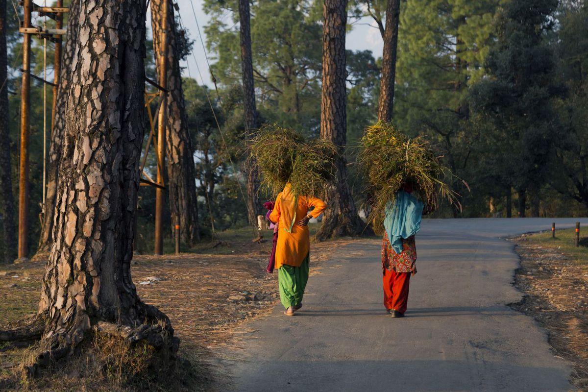 India, ženy