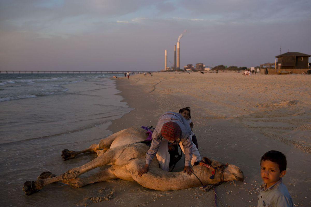 Izrael, ťava, more,pláž, beduín, umývanie