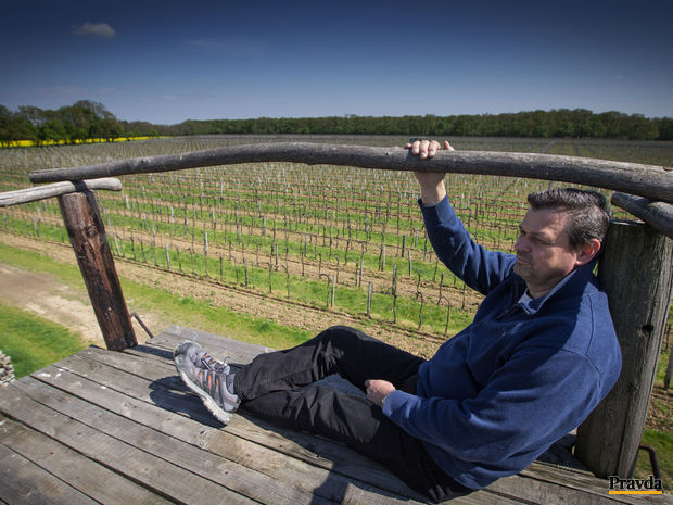 Obrázok Dobré víno prežije svojho tvorcu