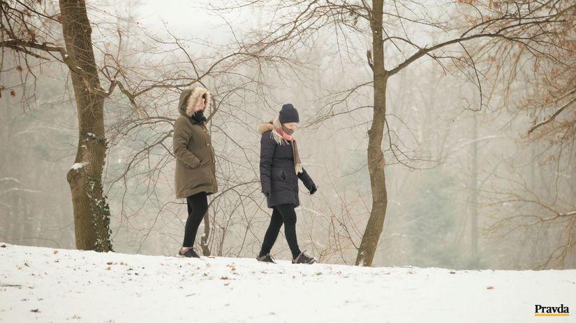 počasie, prechádzka, hmla