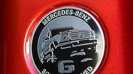 Mercedes-Benz-G350d-2019-1024-33