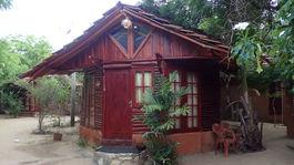 chatka, drevo, Srí Lanka, Kirinda