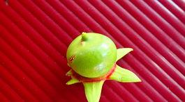 ovocie, kirella, Srí Lanka