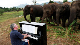 Thajsko, Paul Barton, klavír, slony, hudba,