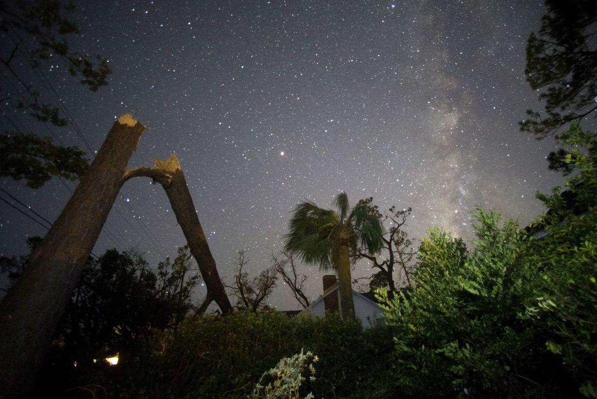 noc, hviezdy, nebo, zlomený strom, Mliečna dráha