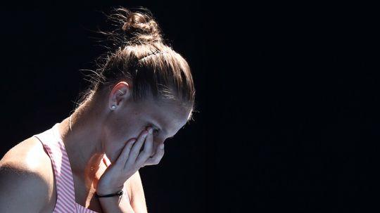 Karolína Plíšková, Serena Williamsová