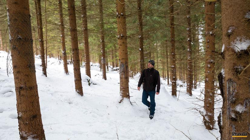 les, Kolesárky
